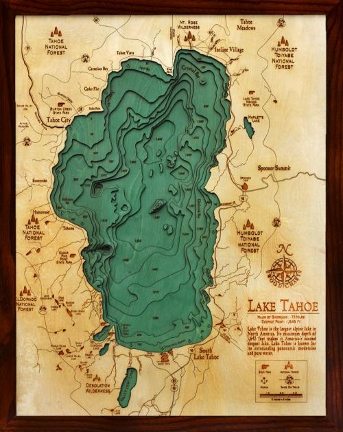 MapCarte94_woodcharts